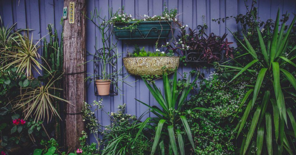 container garden - vertical garden